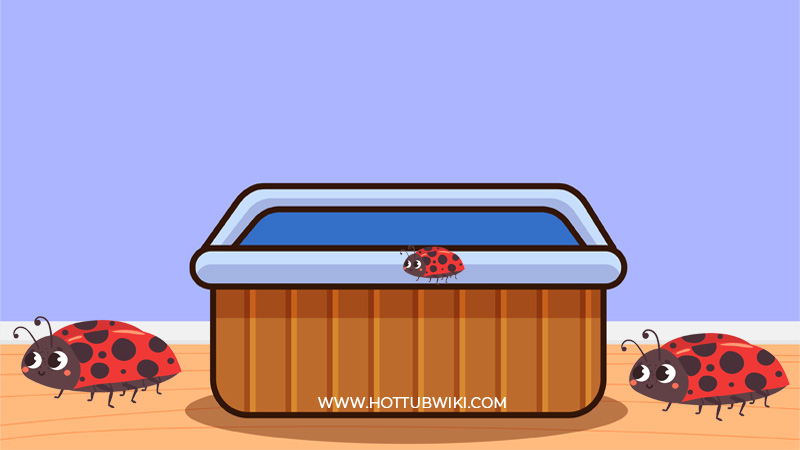 Do hot tubs attract bugs? Yes, they do.