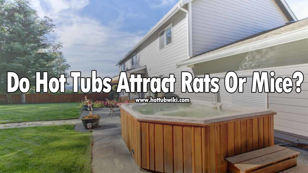 We have talked about snakes, but do hot tubs attract rats or mice? Yes, they do. But, again not directly. If you eat food in your hot tub or make a grill near your hot tub then the chances of rats coming are very high. So, rats or mice don't come directly for the hot tub, they come because of the activities that happen in the hot tub or near the hot tub.