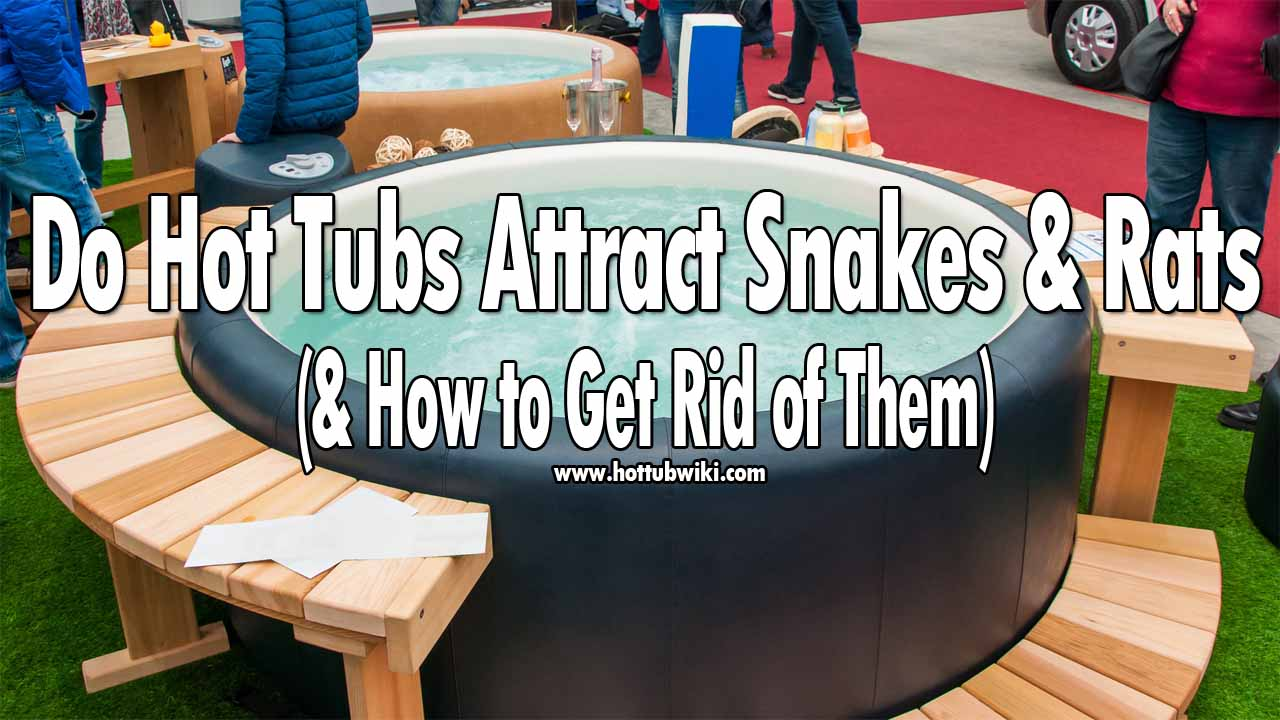 Are you wondering if do hot tubs attract snakes? The answer is no, they don't. At least, not directly. People don't attract snakes, but the food people eat, or the other insect or rats that can be near the hot tub can attract the snakes. Except for that, if your hot tub has a broken space then snakes might come and stay there due to the hot tub's warm temperature. It is advised to fix these broken parts of your hot tub to get rid of snakes.