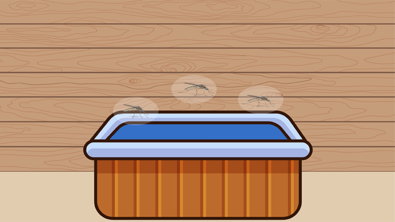 Do Hot Tubs Attract Mosquitoes?
