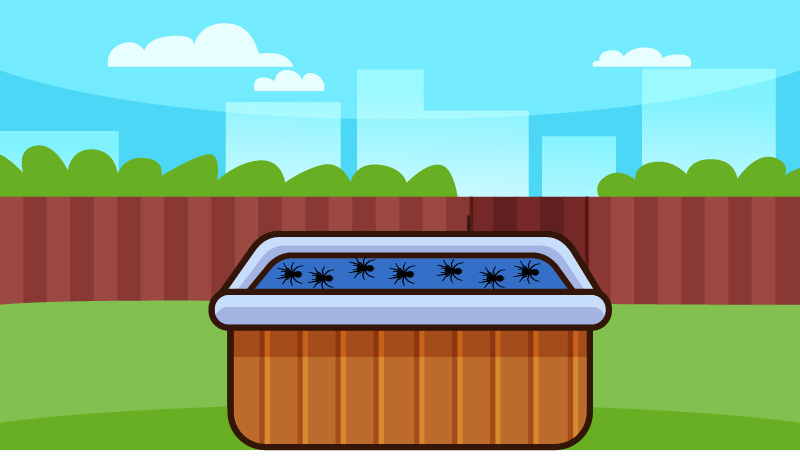 I always asked my self-- do hot tubs attract spiders? They don't directly attract spiders, but the other pests that are near the hot tub attract the spider.