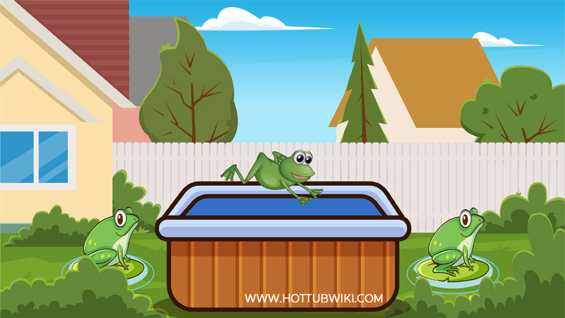 If you are wondering how to keep frogs out of the hot tub then you came in the right place. I will explain the step I took to get rid of frogs in my hot tub.