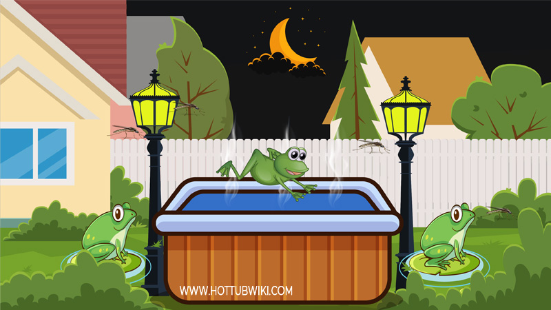 You must be wondering-- why are frogs attracted to my hot tub? The main reason frogs are attracted to your hot tub is because that's where they find food. Frog's favorite food is pests, and if you don't clean your hot tub often, you will have a lot of pests around. The more pests you have around the more frogs you will have.